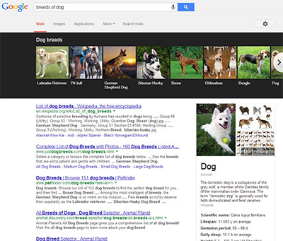 Google Knowledge Graph Carousel search presentation